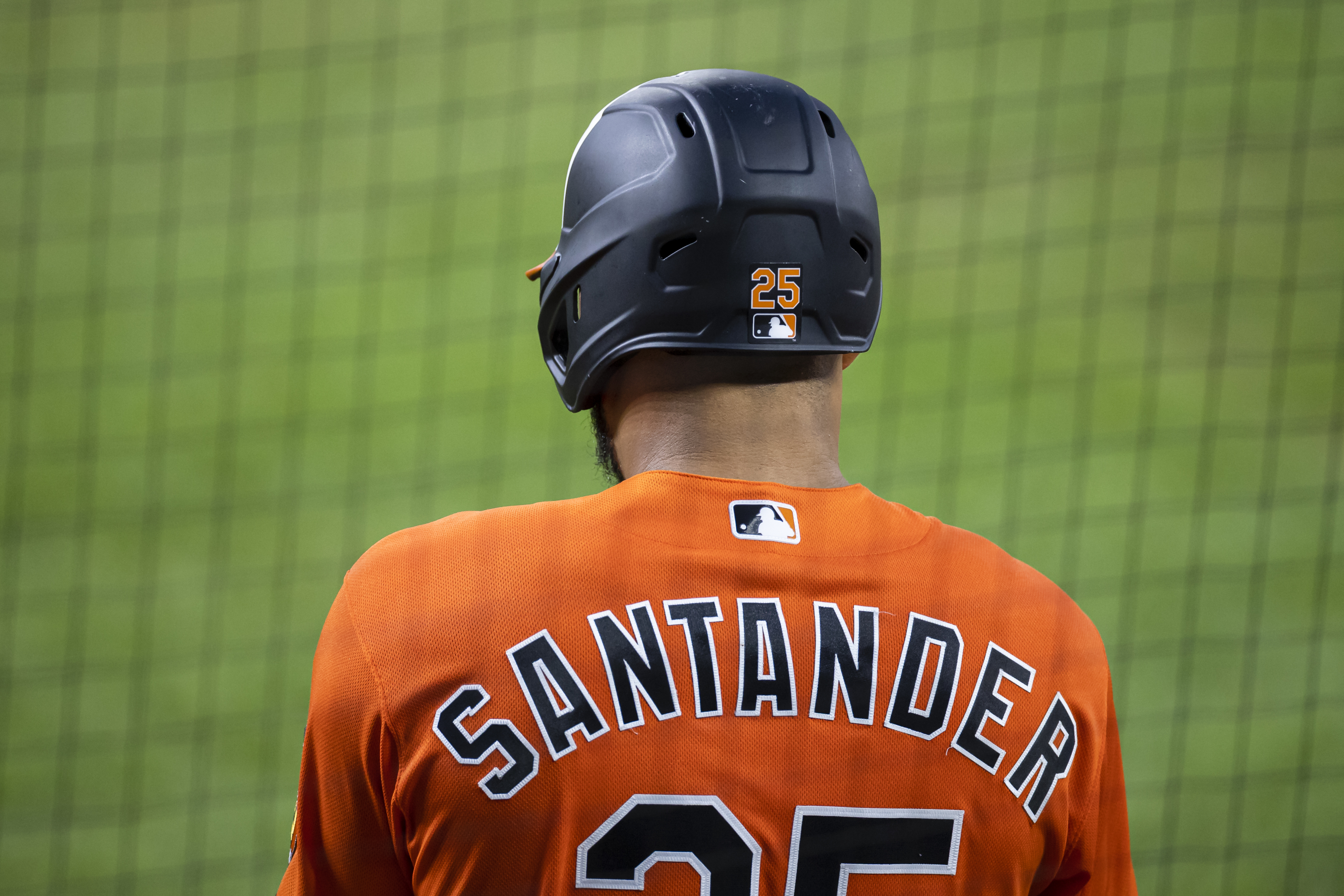 Baltimore Orioles: Anthony Santander Hit Streak Ends in Loss to Rays